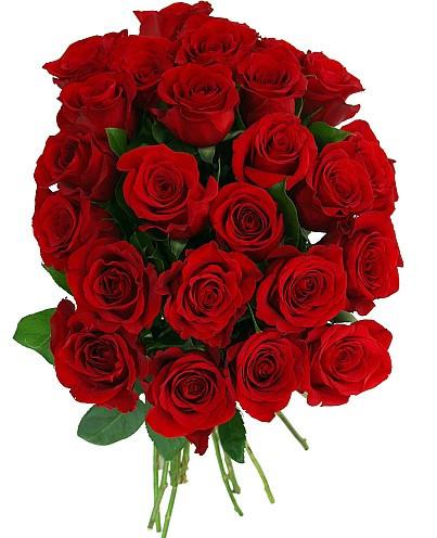 Rose 24-stem bouquet rainforest certified 50 cm   24 ct